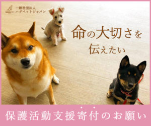 東京の世田谷区と文京区の犬のしつけ教室運営の一般社団法人ハグペットジャパンの寄付のお願いのバナー